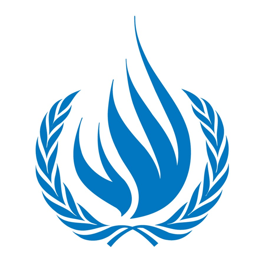 End of Mission Statement of the United Nations Special Rapporteur on the rights to freedom of peaceful assembly and of association, Mr. Clément Nyaletsossi Voule, on his visit to Zimbabwe (17-27 September 2019)